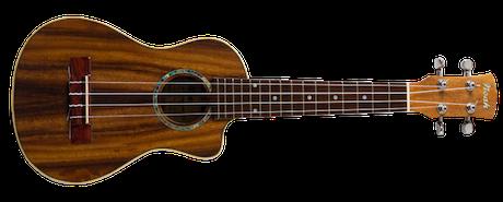 electro monkeypod ukulele